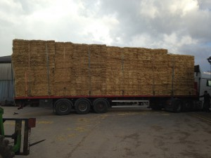 602 small bales loaded and we didn't man handle 1